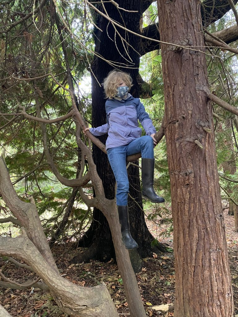 Picture of tween blond girl with mask on sitting in a tree
